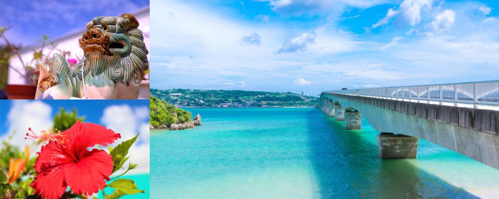 沖縄交通運輸 株式会社 4